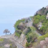若狭路レインボーマラソン(福井)2020の開催日時やコースは?交通規制についても!