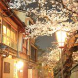 金沢の桜スポット2020!主計町茶屋街の開花や見頃はいつ?見所や口コミも!