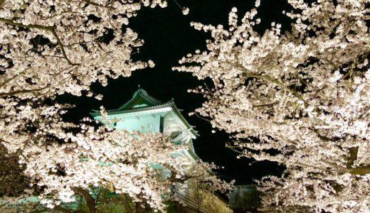 金沢の桜スポット2020!兼六園の無料開放はいつから?見頃時期や口コミも!